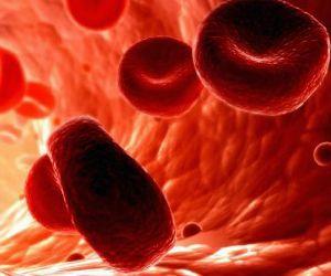 Фолиевая кислота: симптомы нехватки